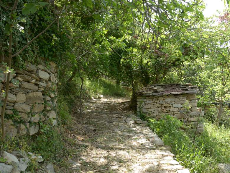 Footpath behind the house for sale